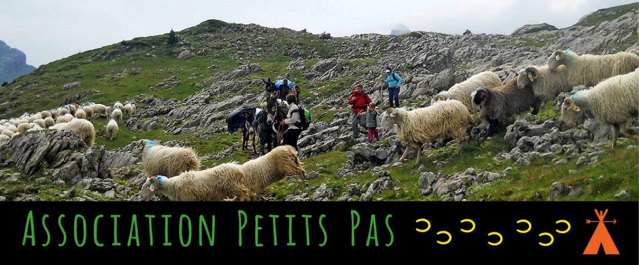 Balades et randonnées au rythme d'un âne en Vallée d'Ossau – Pyrénées Atlantiques